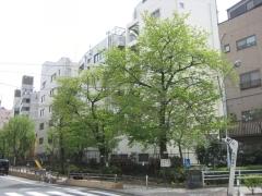 IMG_0129-01