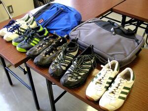shoesbag2